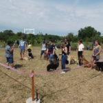Kutyaszépségversenyt rendezett az egyik szentesi klub