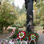 Díszpolgári cím és Pro Urbe Csongrád kitüntetés az ünnepen