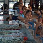 Körzeti úszóverseny a sportuszodában