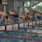 Elkezdődött a kétnapos szentesi úszóverseny