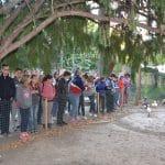 Orosházi tinik a szentes madármentő állomáson