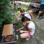 A természet is segítheti a gyerekek fejlődését