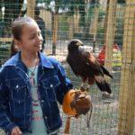 Kettős születésnap a madármentő állomáson