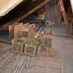 Marihuánát találtak egy szentesi padláson
