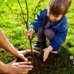 A környezettudatos gyermek