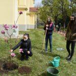 Fákat ültettek a református iskola ballagó diákjai