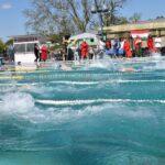Sikeres úszóversenyt rendeztek  a szentesi szeniorok