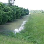 Emelkedik a Tisza vízszintje (2021. május 25.)